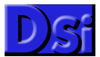 """דסי מערכות מידע בע""""מ"""